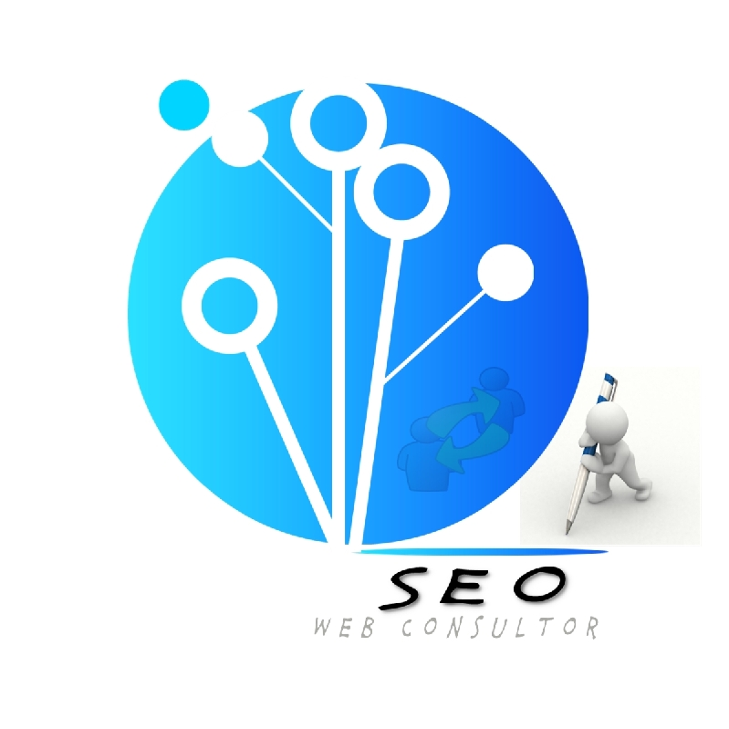 Seo Web Consultor