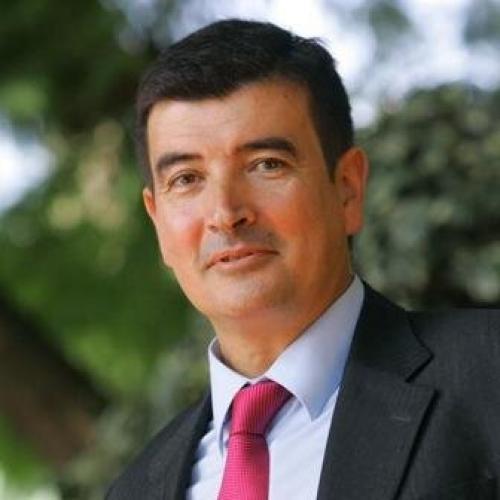 Fernando Giner Grima