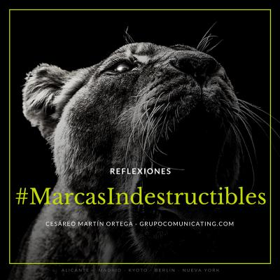 Reflexiones #MarcasIndestructibles