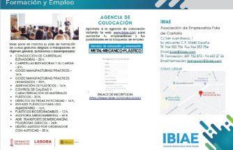 Plan de Formación 2020 IBIAE