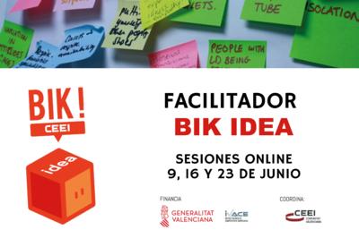 Sesiones online Facilitadores BIK Idea