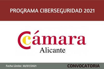Programa Ciberseguridad 2021